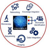 Stylized images of the application areas (networking, knowledge integration, biomarker idenification, data integration, imaging, sequencing, microscopy) arranged in a circle around Interpretable AI